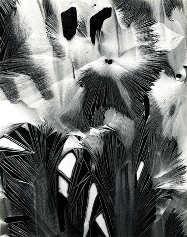 cracked paint garrapata by brett weston