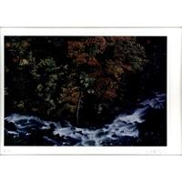 bach fließt an herbstbäumen vorbei / stream flowing through autumn trees by takeuchi toshinobu