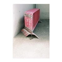 pink riot by nicolas jasmin