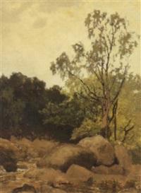 betwys-y-coed (wales) by downward birch