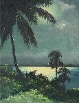 floriday highwayman indian river nocturnal scene by harold newton