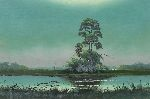 nocturnal florida highwaymen st. johns river backwaters scene by sam newton