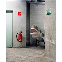 basement shark (from skeletons in the closet) by klaus pichler