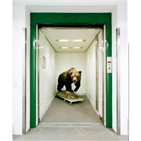 elevator bear (from skeletons in the closet) by klaus pichler