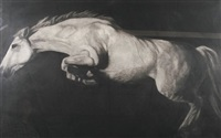 portrait of a horse by paddy lennon