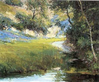 a stream in summer by marlin linville