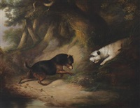 terriers ratting by george armfield