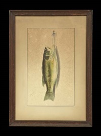nature morte - bass by george luis viavant