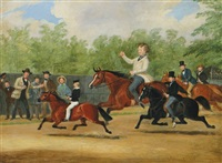 the pony race by james pollard