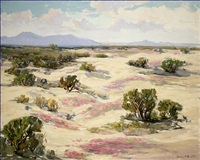 blooming verbena in a vast desert landscape by harry c. smith