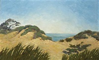 the dunes by american school-california (20)