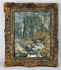 ruisseau en forêt by pierre pignolat