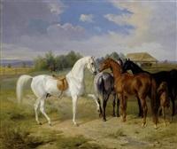 pferde auf der weide by albrecht adam