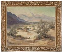desert landscape by evylena nunn miller