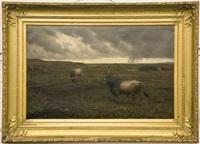 deux taureaux sous un ciel d'orage by evert louis van muyden