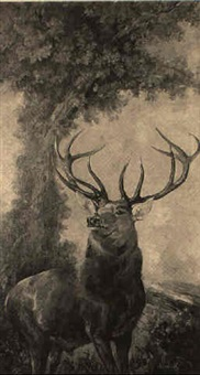 the monarch of the glen by marie weger-kleinbardt