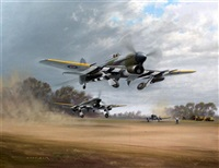 striking back, typhoons, 2nd taf, 1944 normandy by gerald coulson