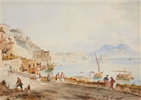 the bay of naples with mount vesuvius by achille vianelli