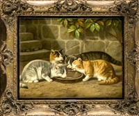 vier katzen am futternapf by julius adam the younger