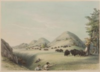 buffalo hunt, approaching in a ravine, no. 11 by george catlin