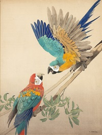 two parrots on a branch by julius moessel