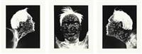 autobodyography (3 works) by william anastasi