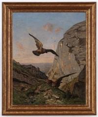 faucons en vol by nathanaël lemaitre