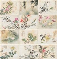 草虫花鸟册 (album of 12) by liu deliu