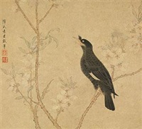 桃花鸣禽图 (birds and flowers) by xue susu