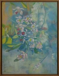 orchidées by ewa senczawa