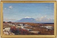 paysage et mont enneigé by max roeder