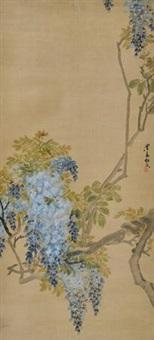 紫藤 by ren xiong