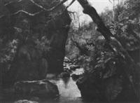 idyllischer waldbach mit felsigem monolith by margaret simpson