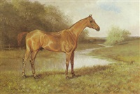 a chestnut horse in a field by george l. harrison
