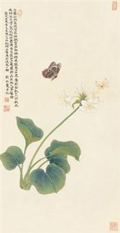 玉簪双蝶 by liu bonong
