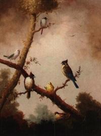 six song birds by jeannine albert