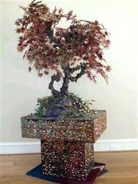 maple bonsai by cristina lei rodriguez