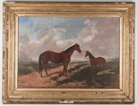 mare and foal in a field by edward p. sanguinetti