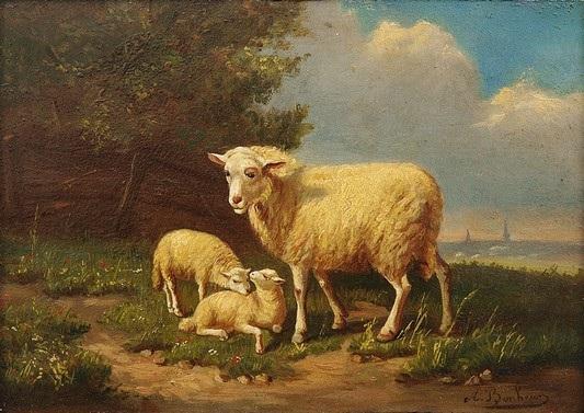 Schaf mit zwei a
