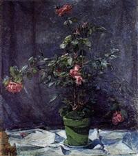rosen in einem topf by reinhold lischka