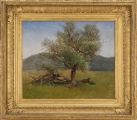 tree, lenox, massachusetts by william stanley haseltine