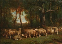 sheep grazing in a clearing by charles jacques