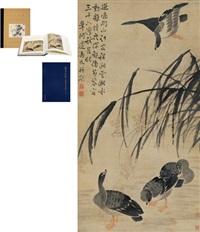 菰蒲芦雁图 (wild geese) by bian shoumin