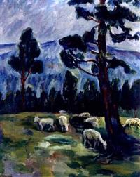 sheep in a meadow by kristen holbø