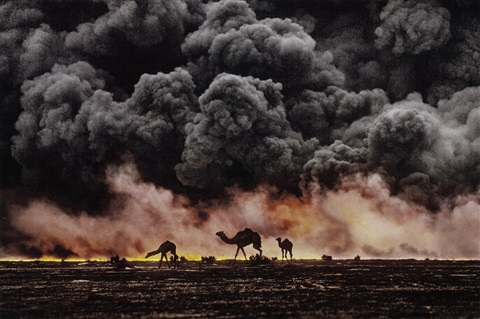kuwait camels in oil fire by steve mccurry