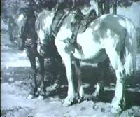 rastende pferd unter baumen by emanuel hegenbarth