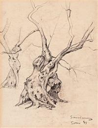 paisajes y estudios (4 works) by ramon sanvisens