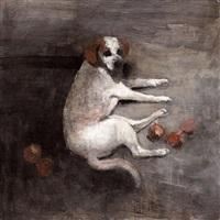 perro by miguel macaya