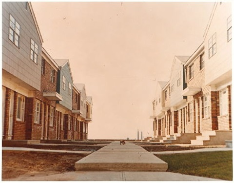 homes for america diptych by dan graham