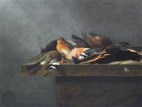 dead birds on a stone ledge by jan vonck